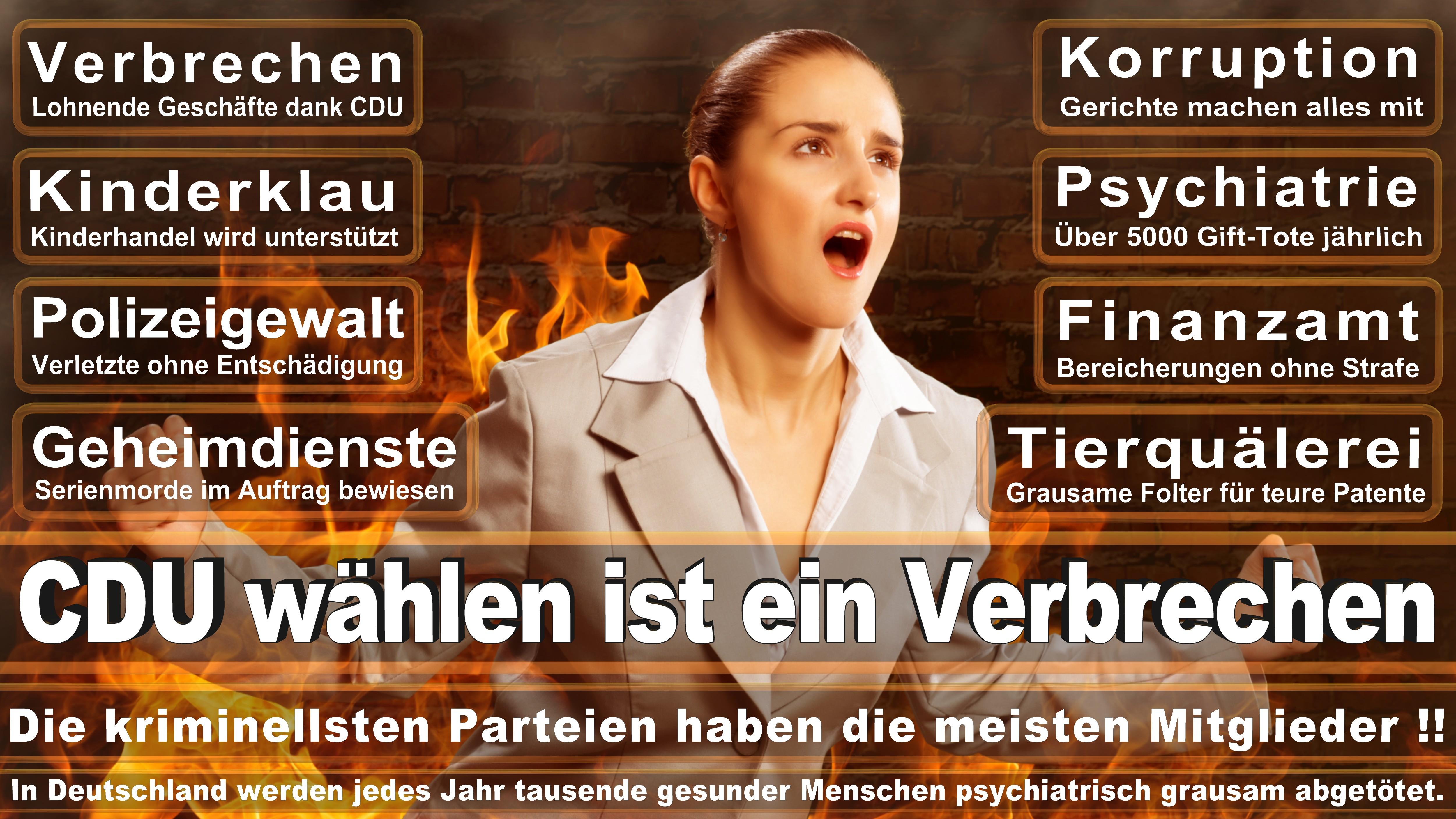 Europawahl-CDU-SPD-FDP (187)