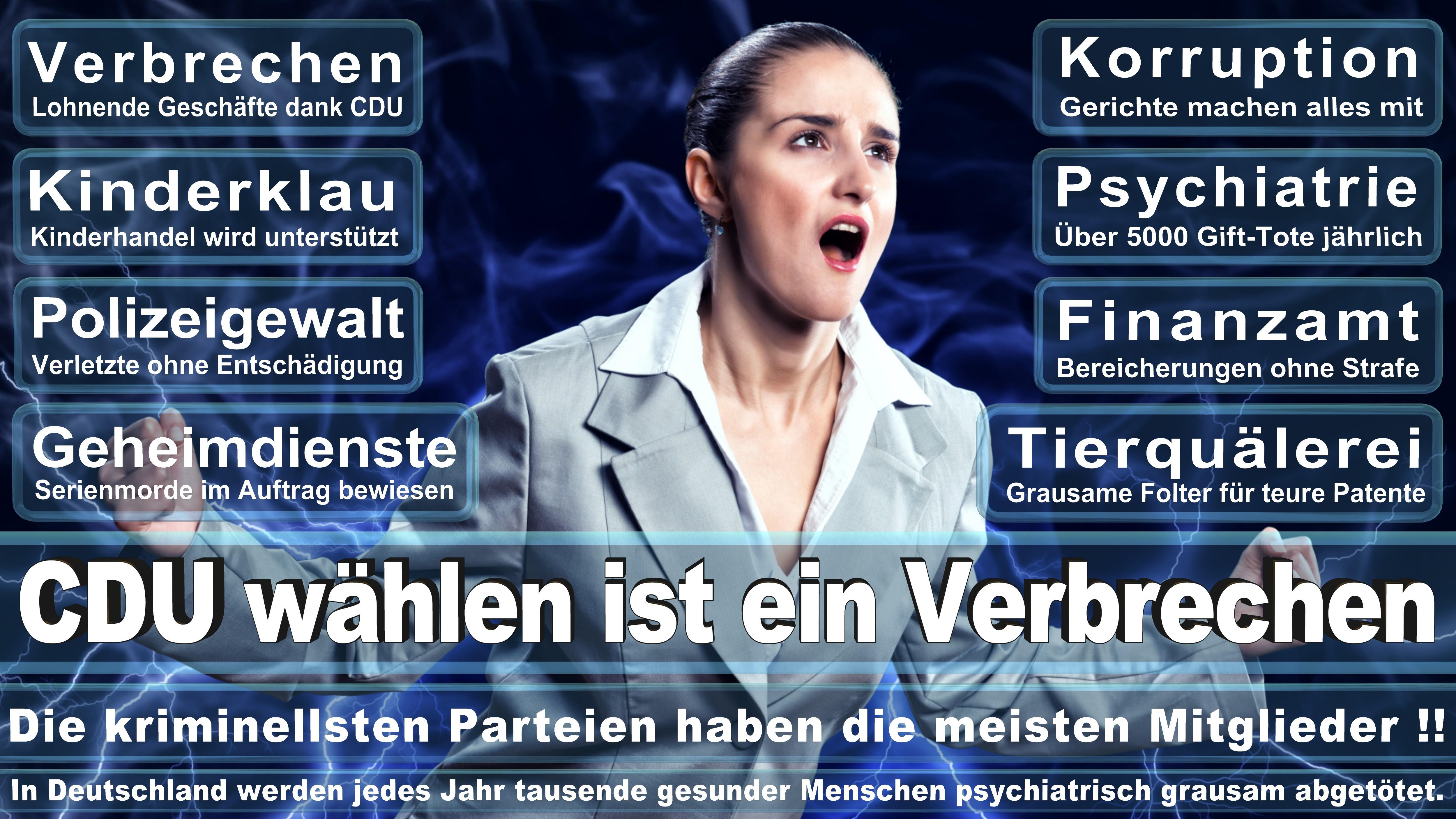 Europawahl-CDU-SPD-FDP (188)