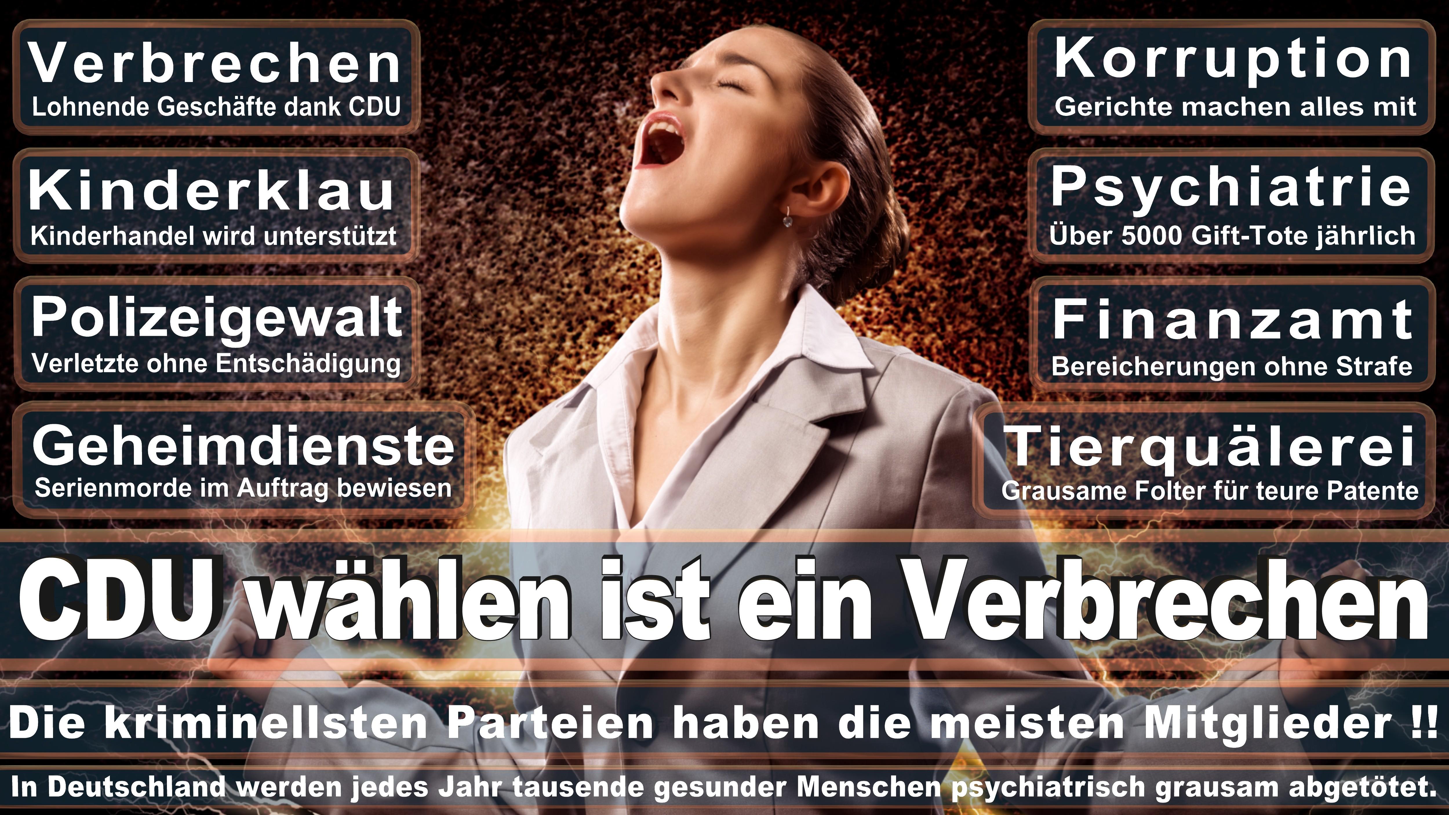 Europawahl-CDU-SPD-FDP (190)
