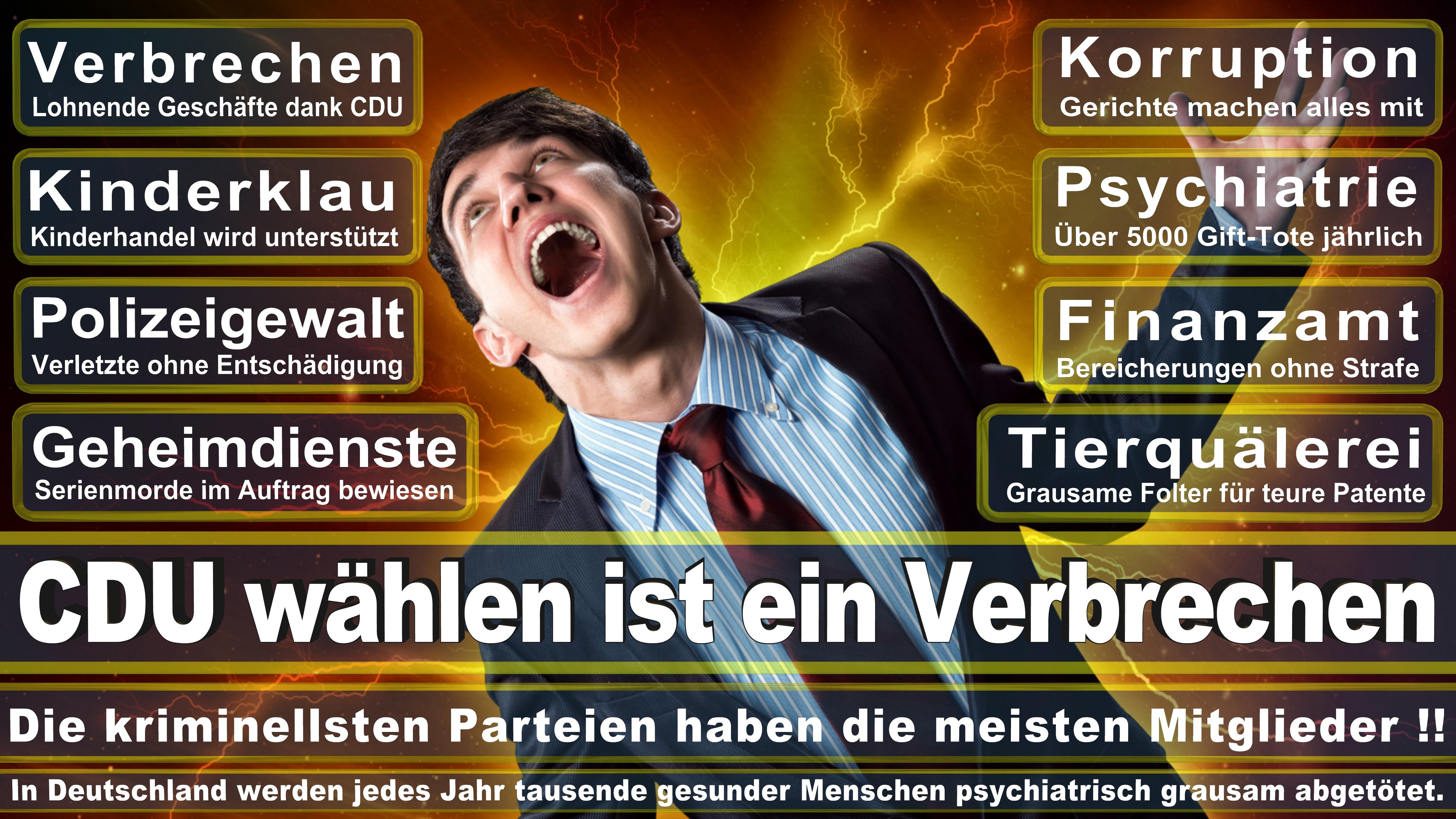 Europawahl-CDU-SPD-FDP (191)