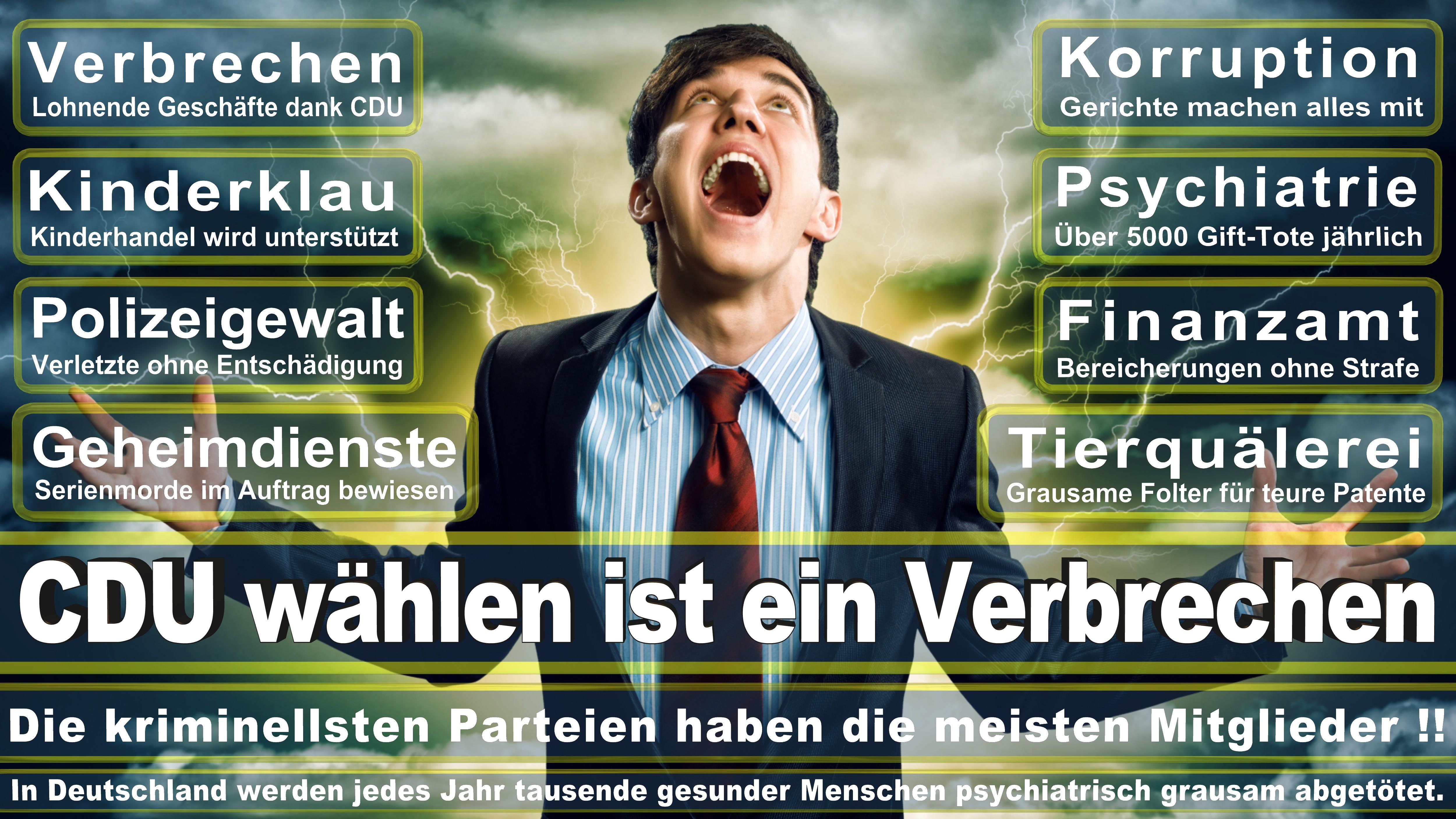 Europawahl-CDU-SPD-FDP (192)