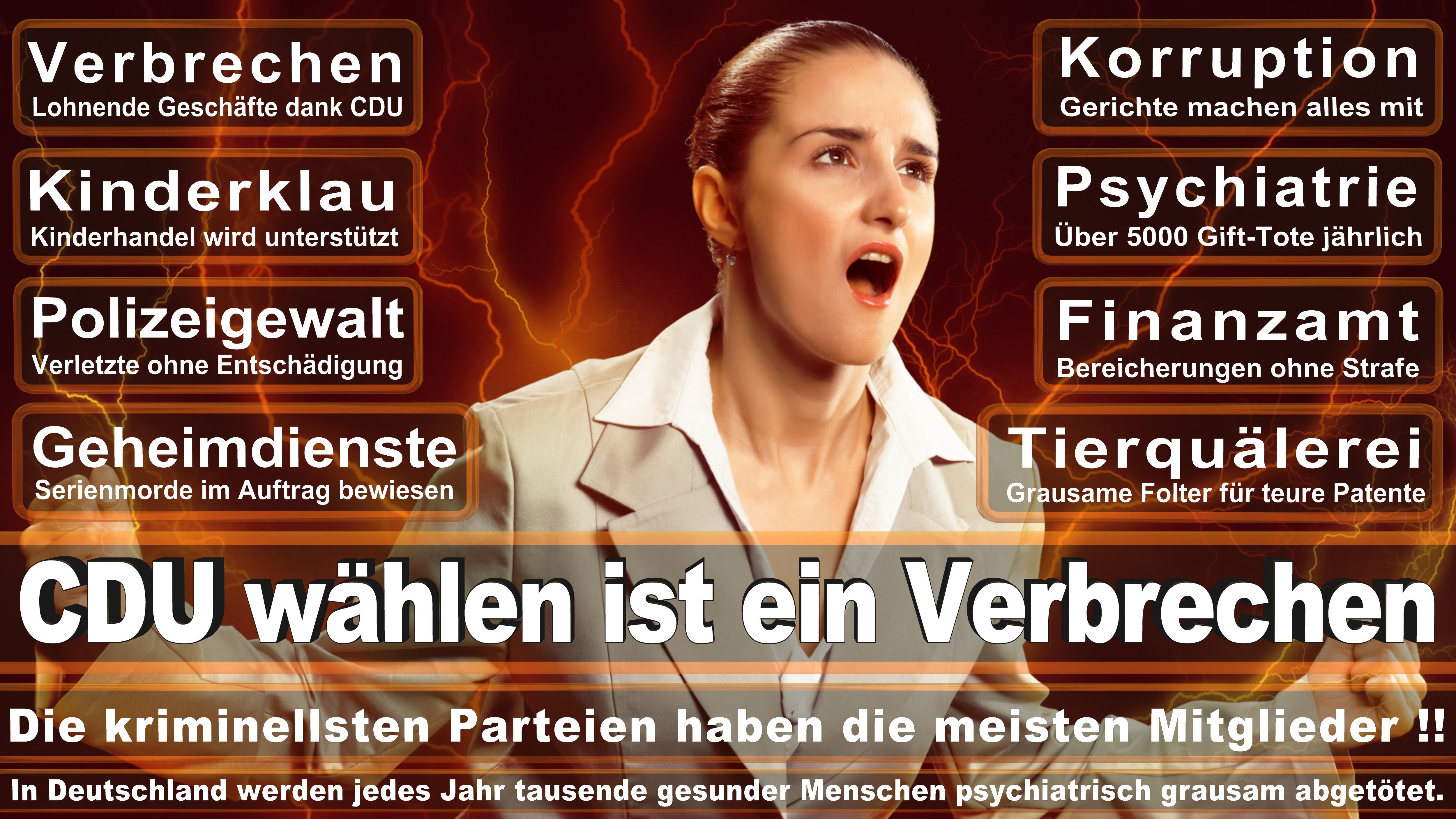 Europawahl-CDU-SPD-FDP (193)