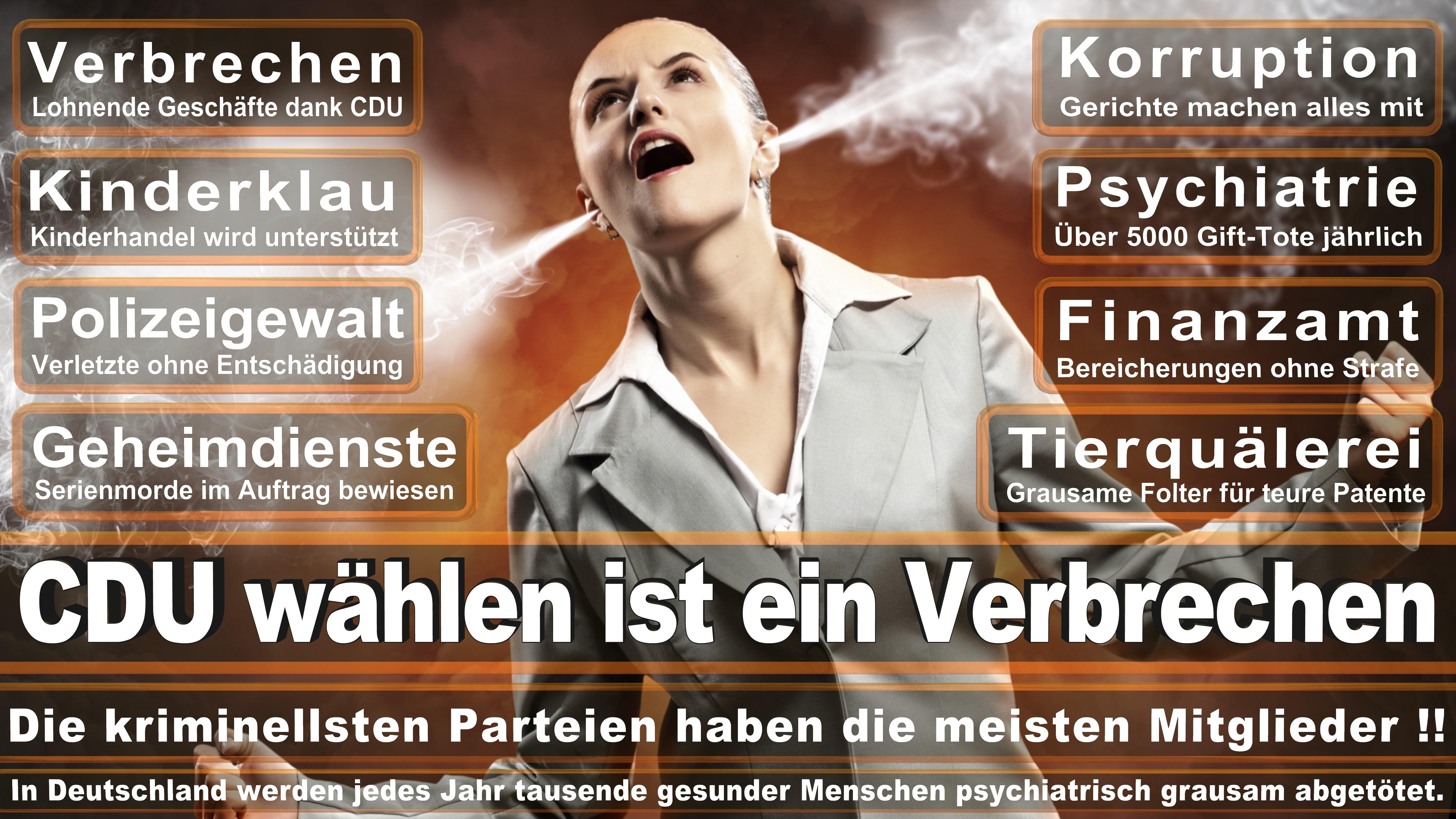 Europawahl-CDU-SPD-FDP (194)