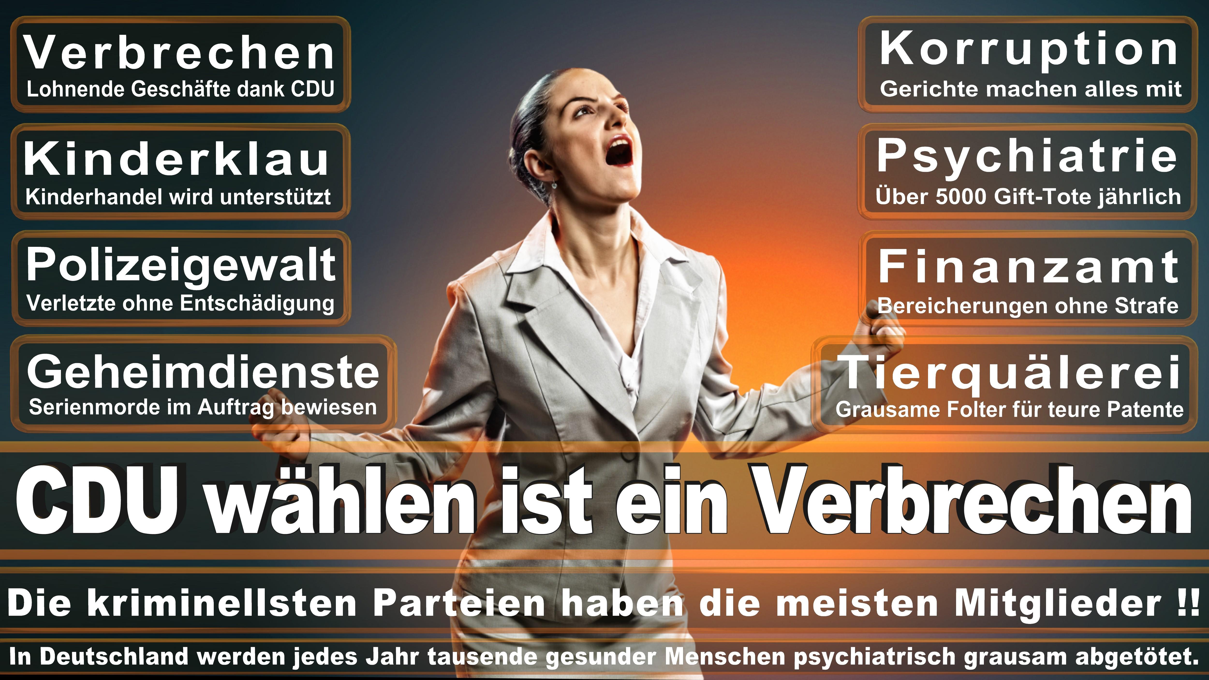 Europawahl-CDU-SPD-FDP (195)