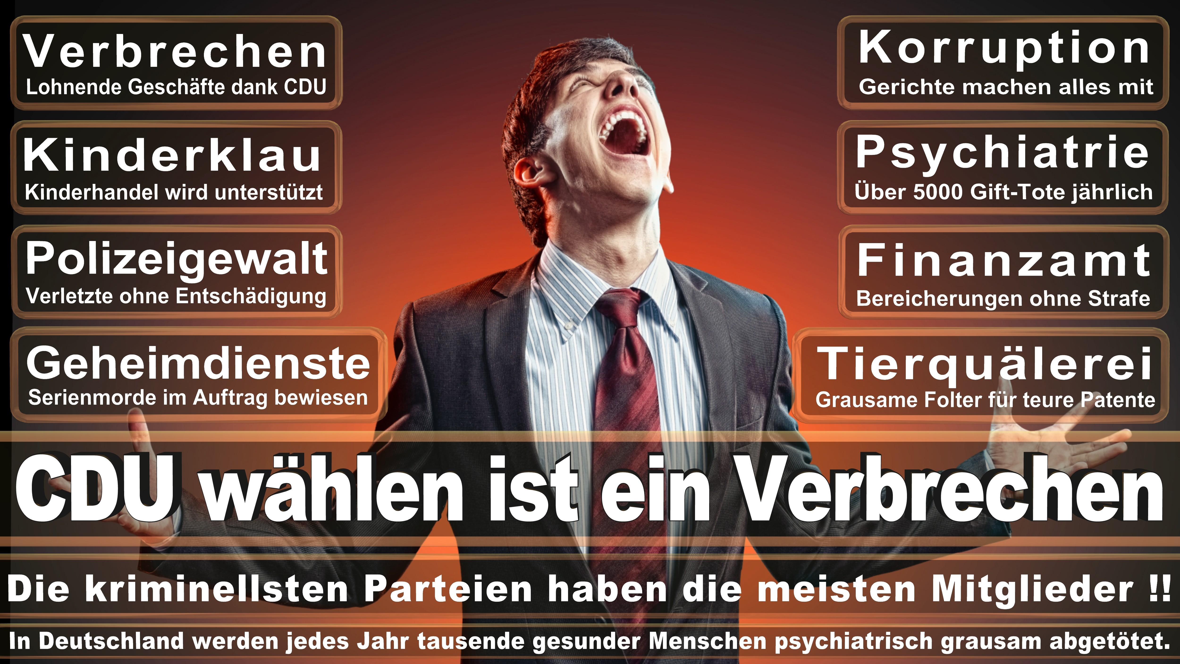Europawahl-CDU-SPD-FDP (196)