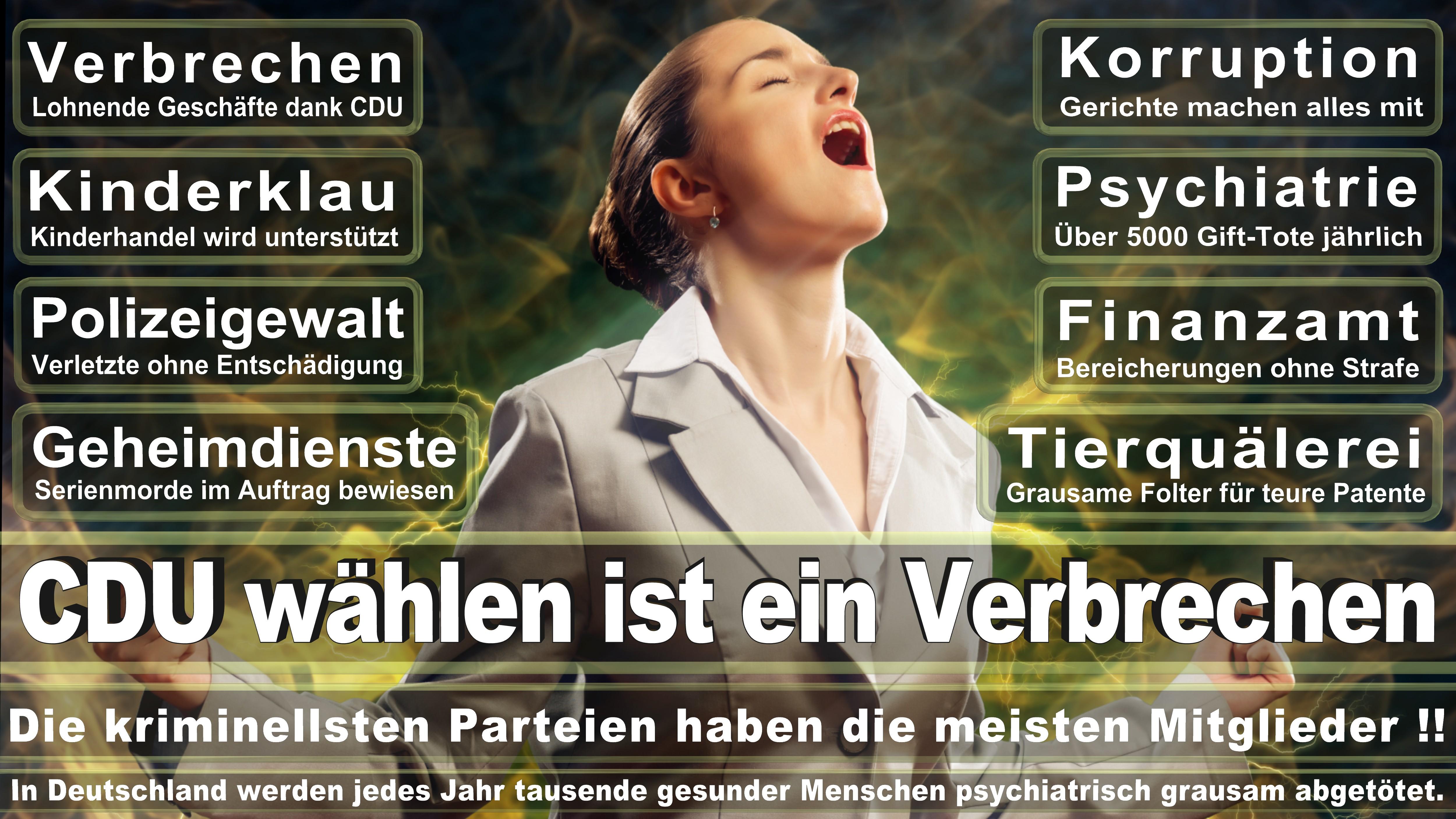 Europawahl-CDU-SPD-FDP (197)