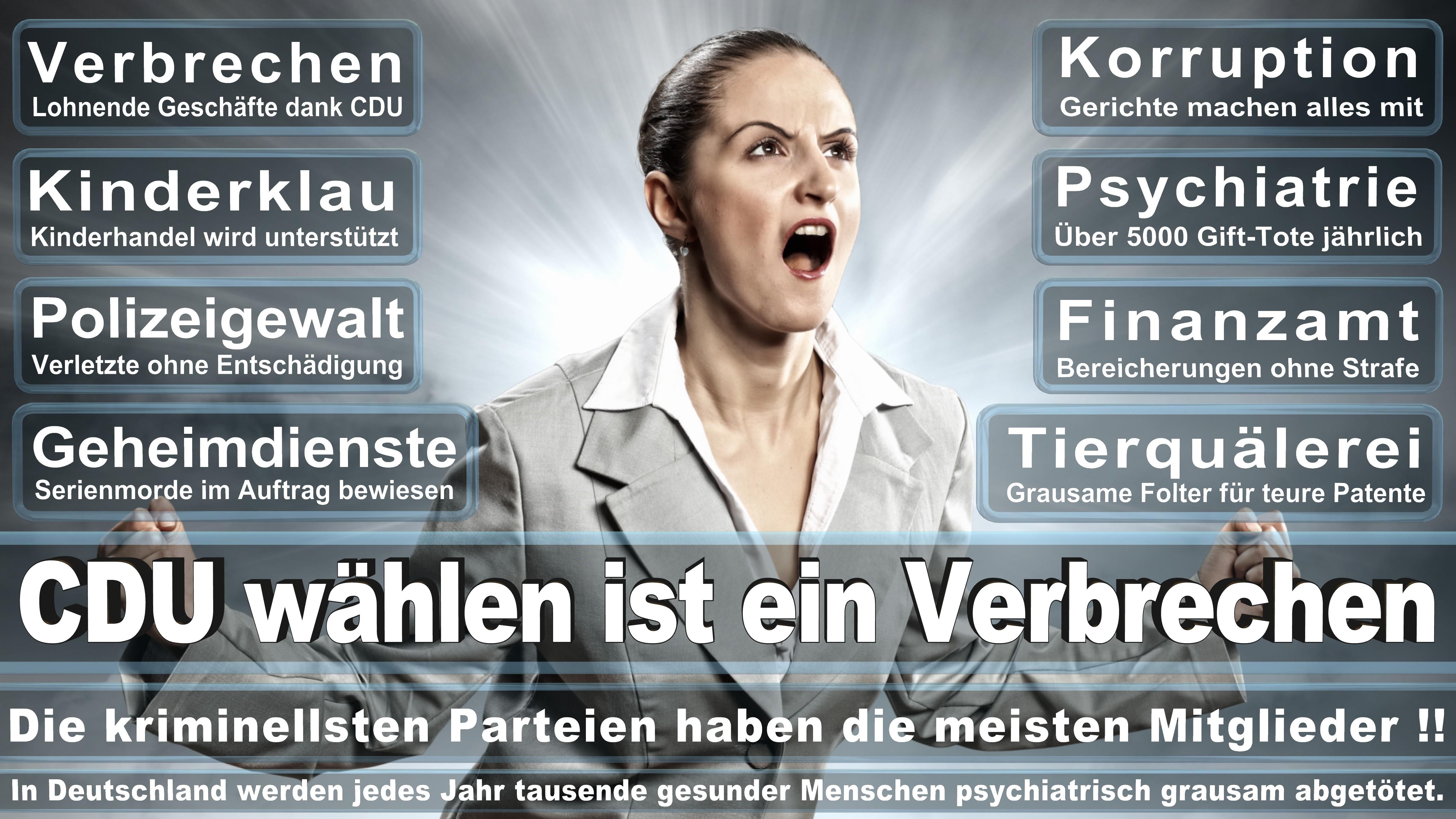 Europawahl-CDU-SPD-FDP (198)