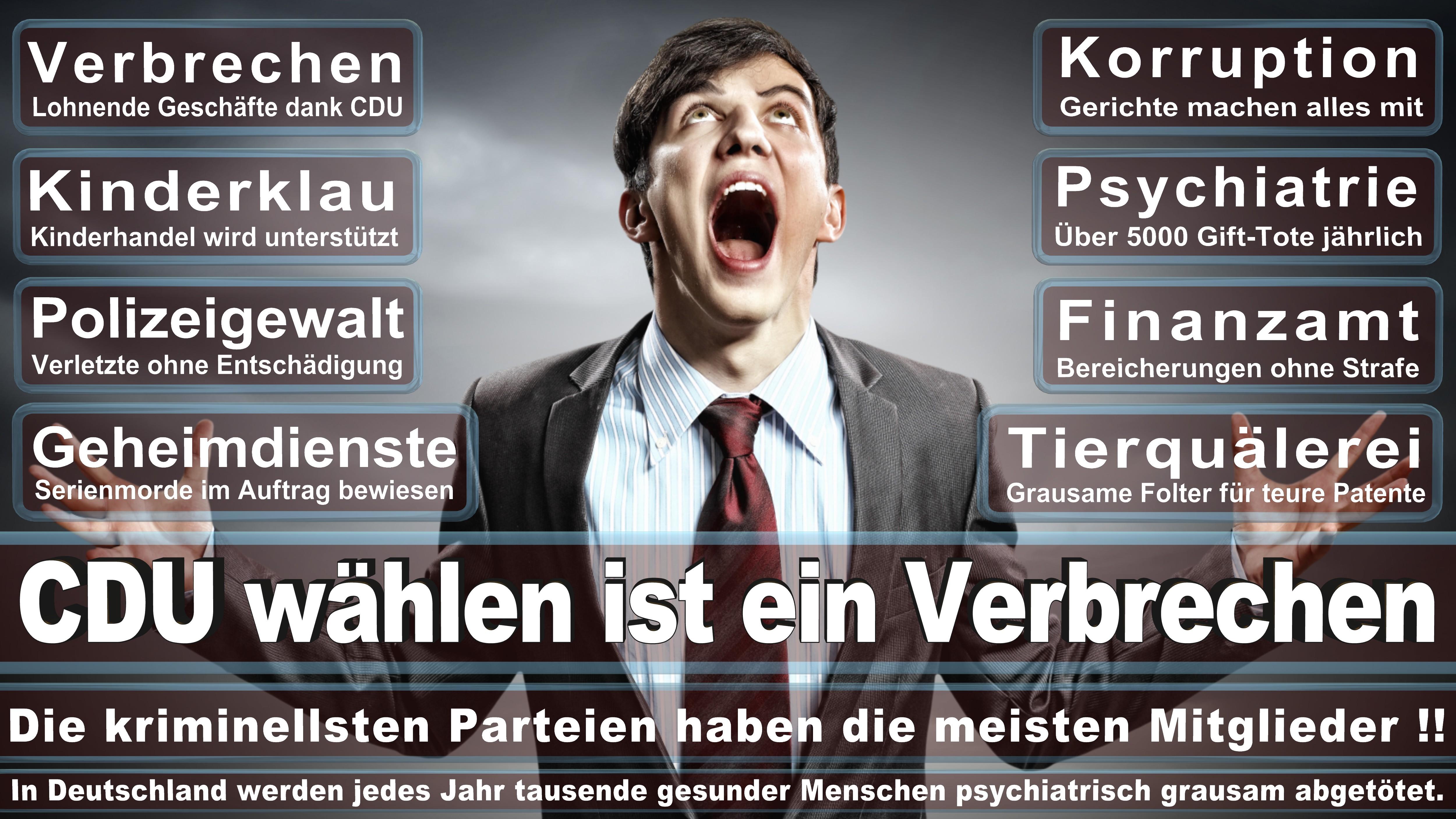 Europawahl-CDU-SPD-FDP (199)