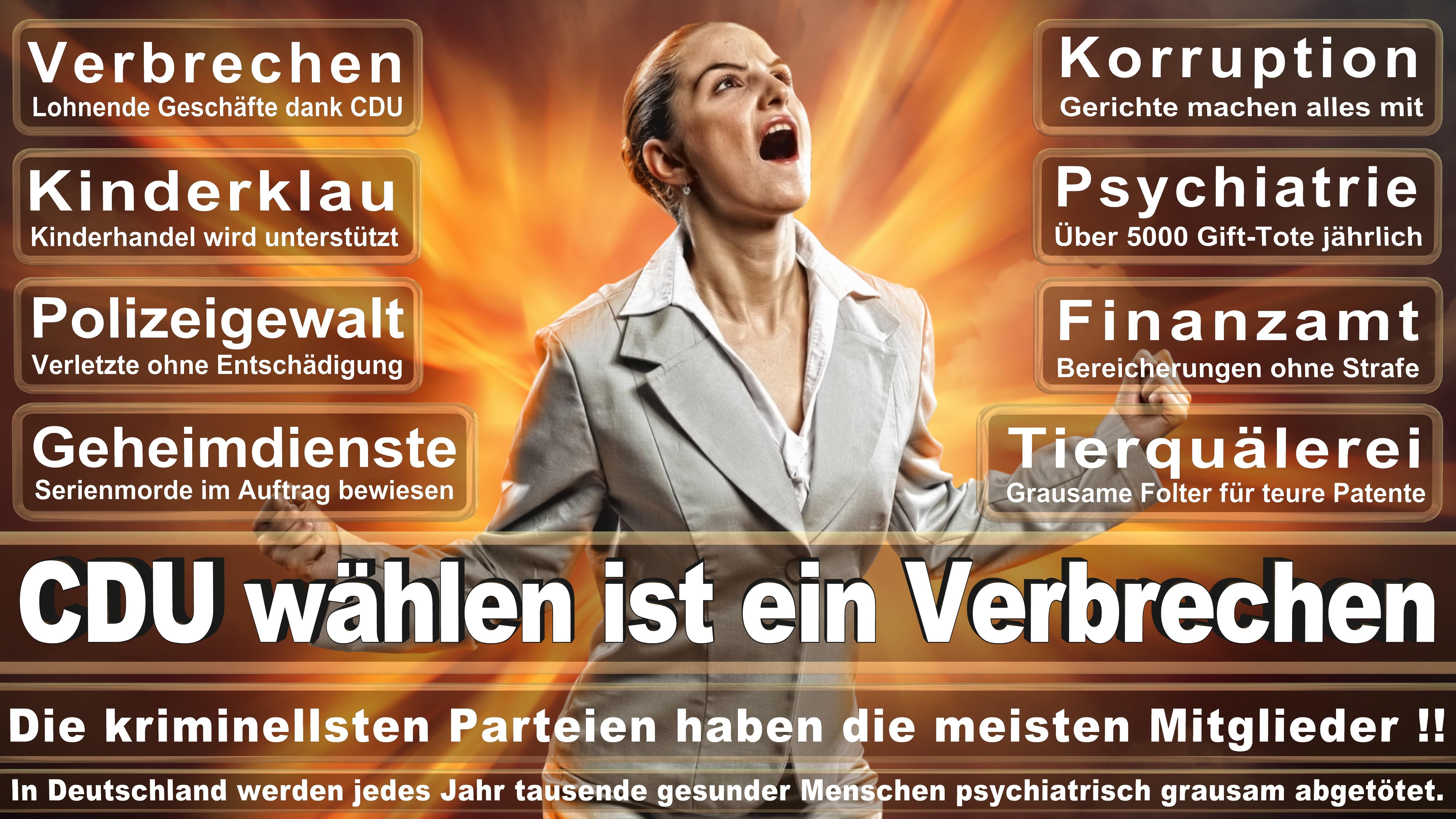 Europawahl-CDU-SPD-FDP (200)