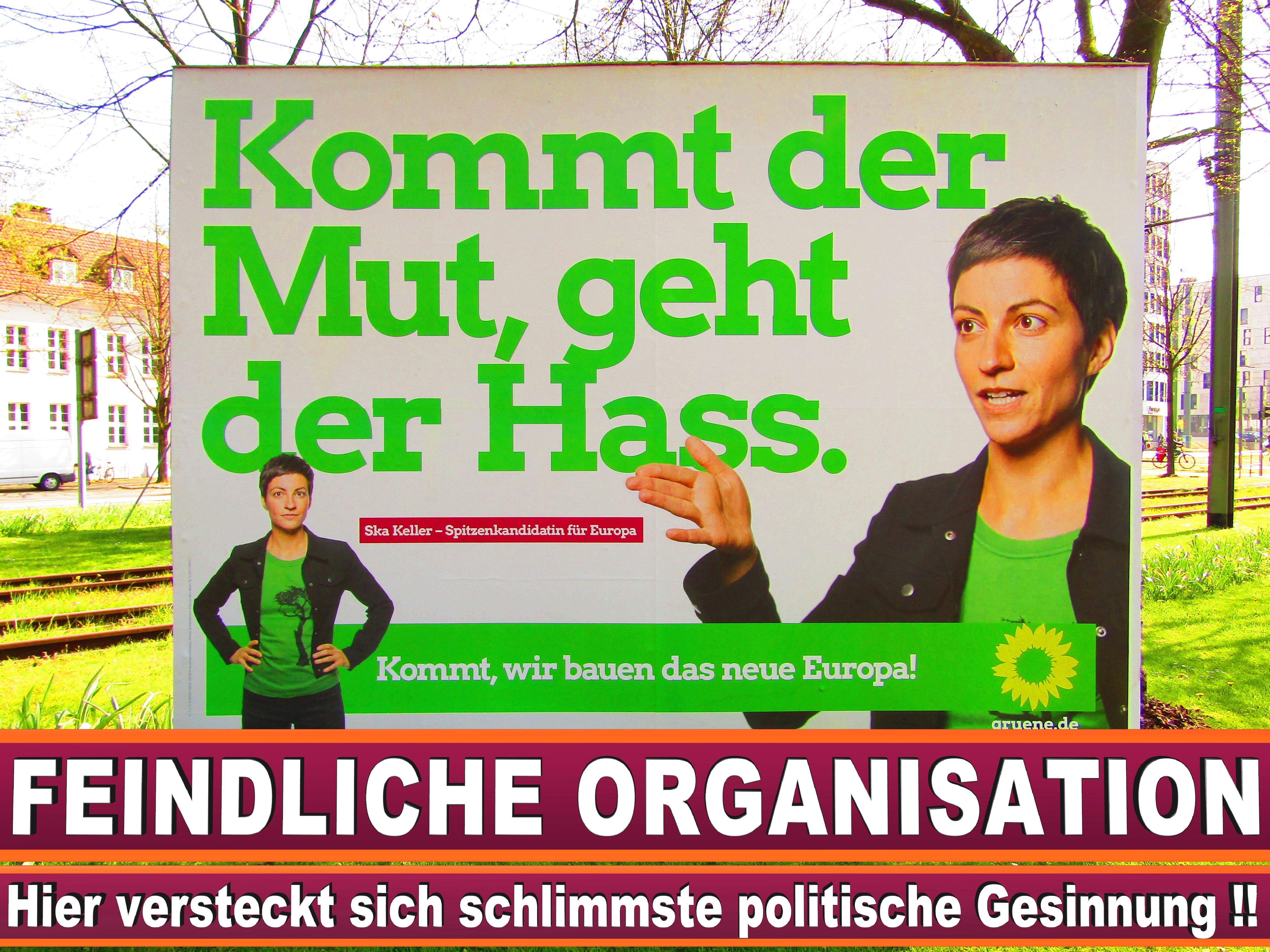 Europawahl Die Grünen