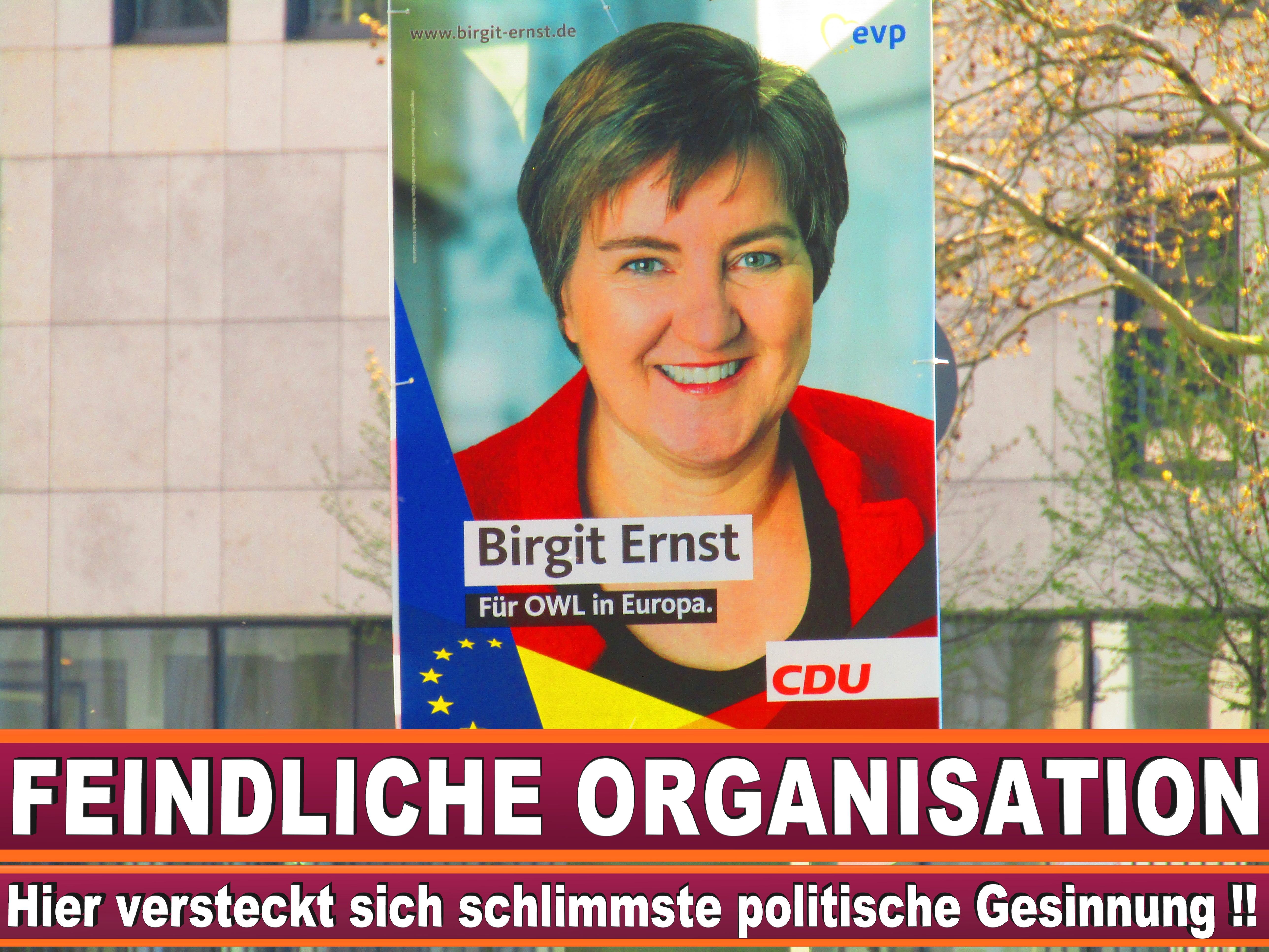 Europawahl Erklärt