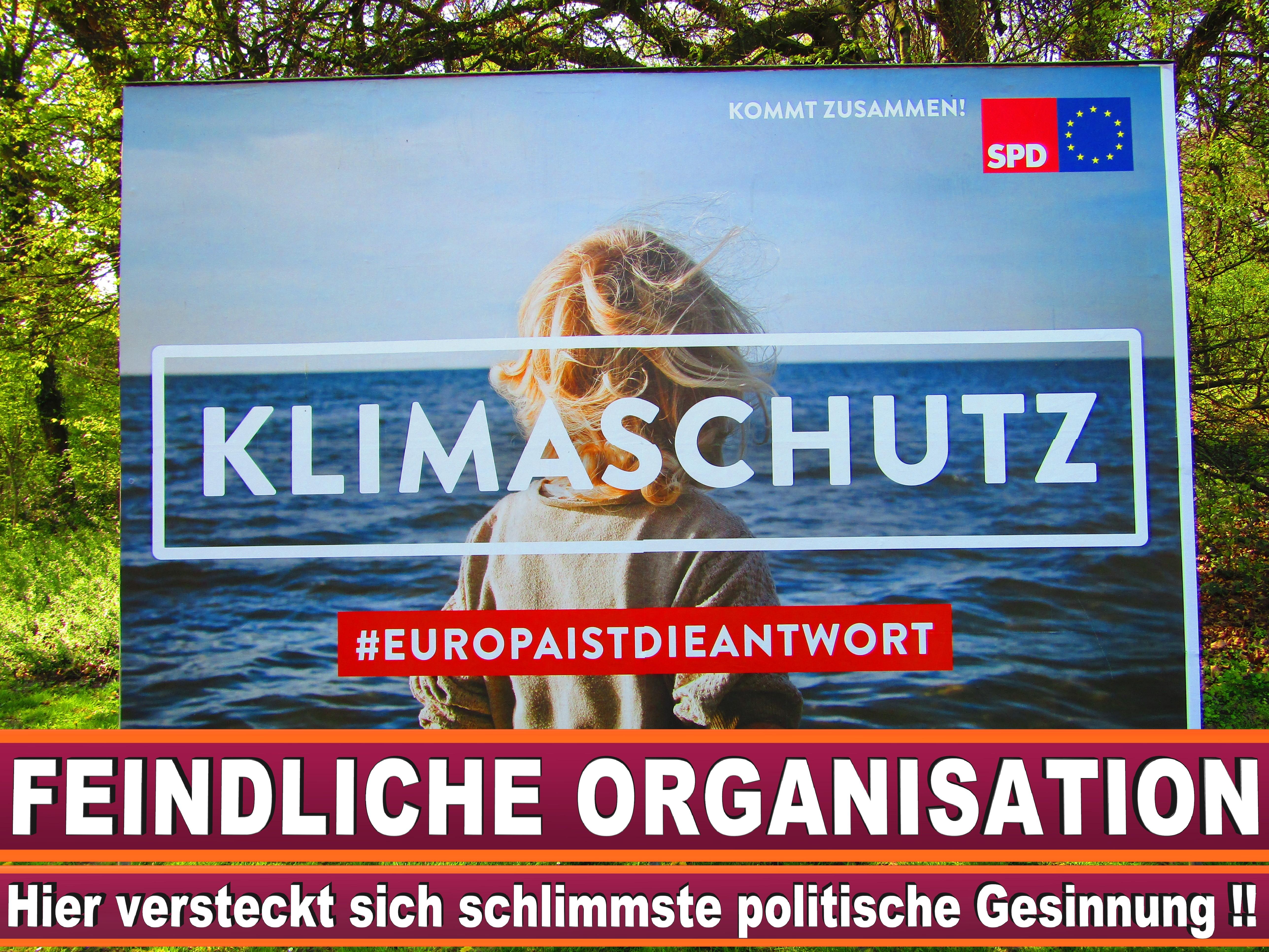 Europawahl Erklärung