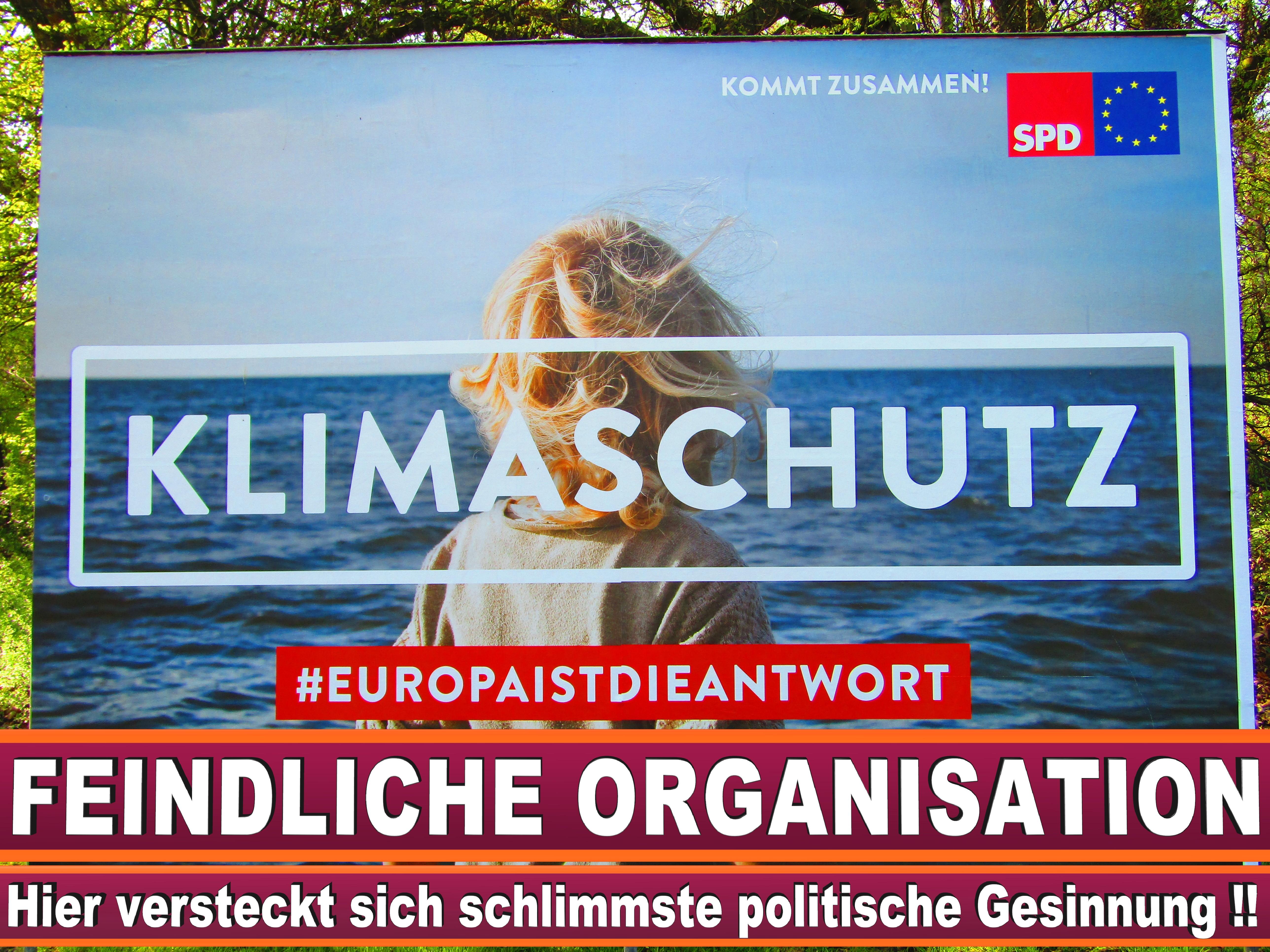 Europawahl Fraktionen