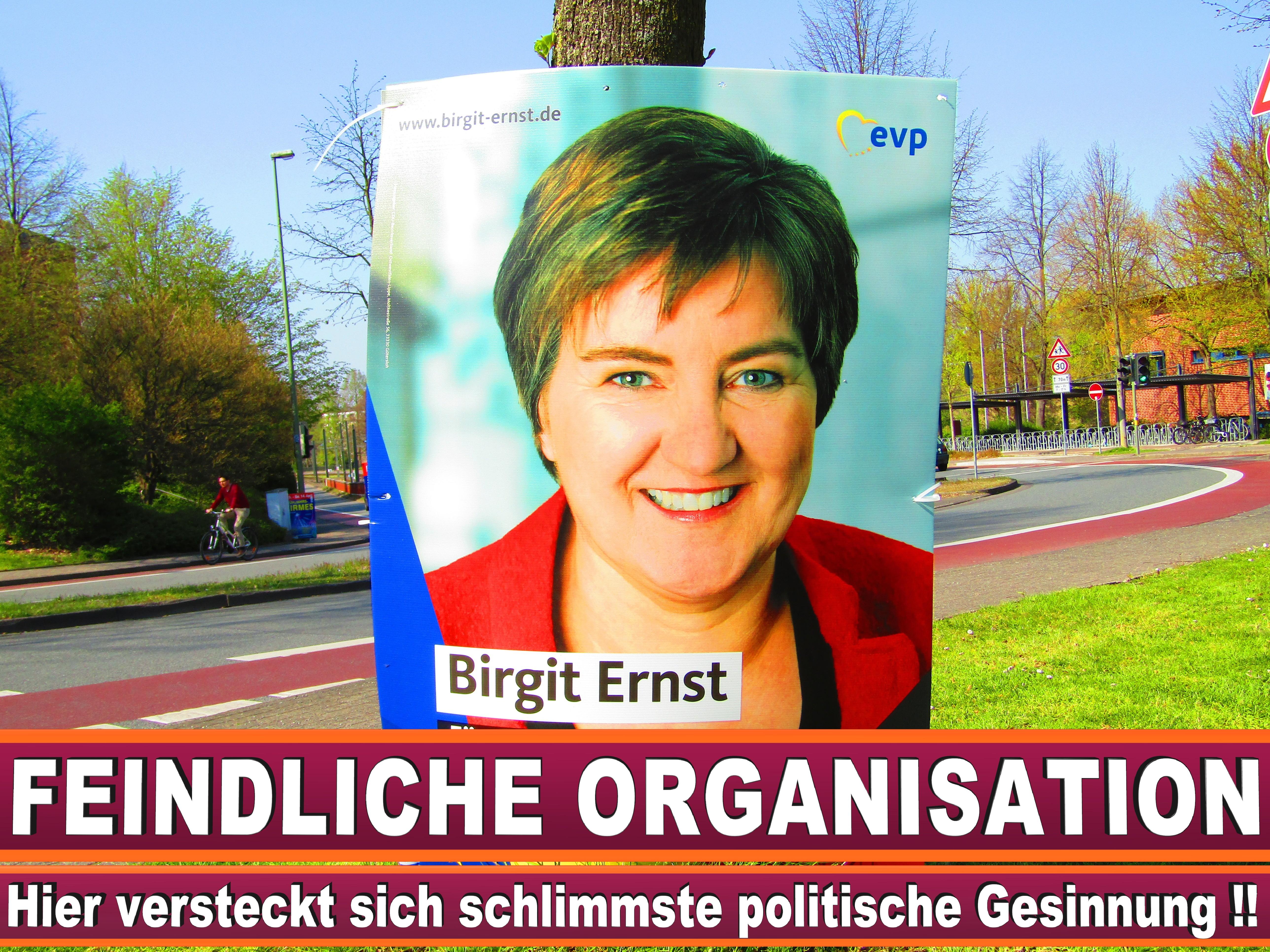 Europawahl Grüne Liste