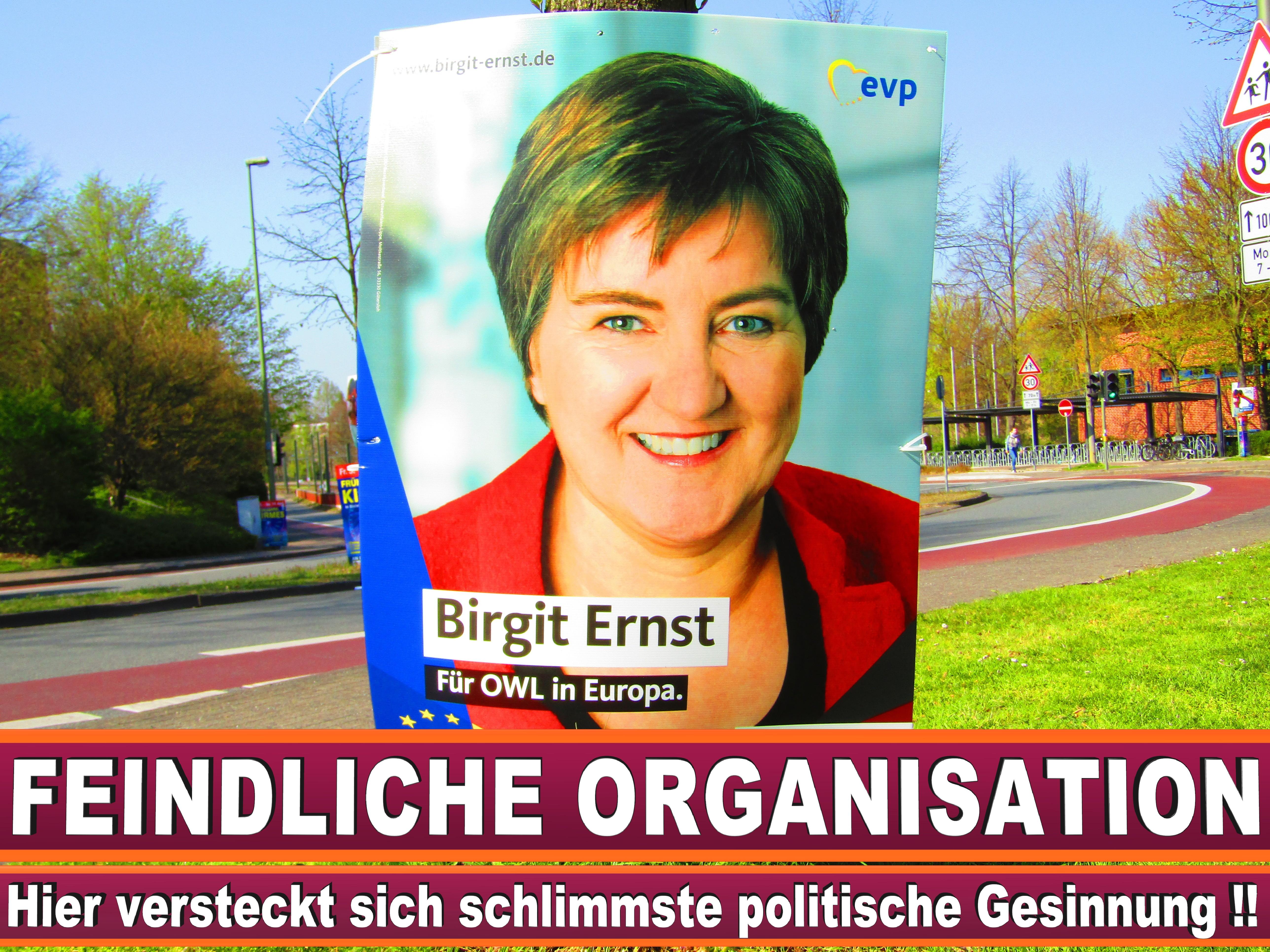 Europawahl Grüne Nrw