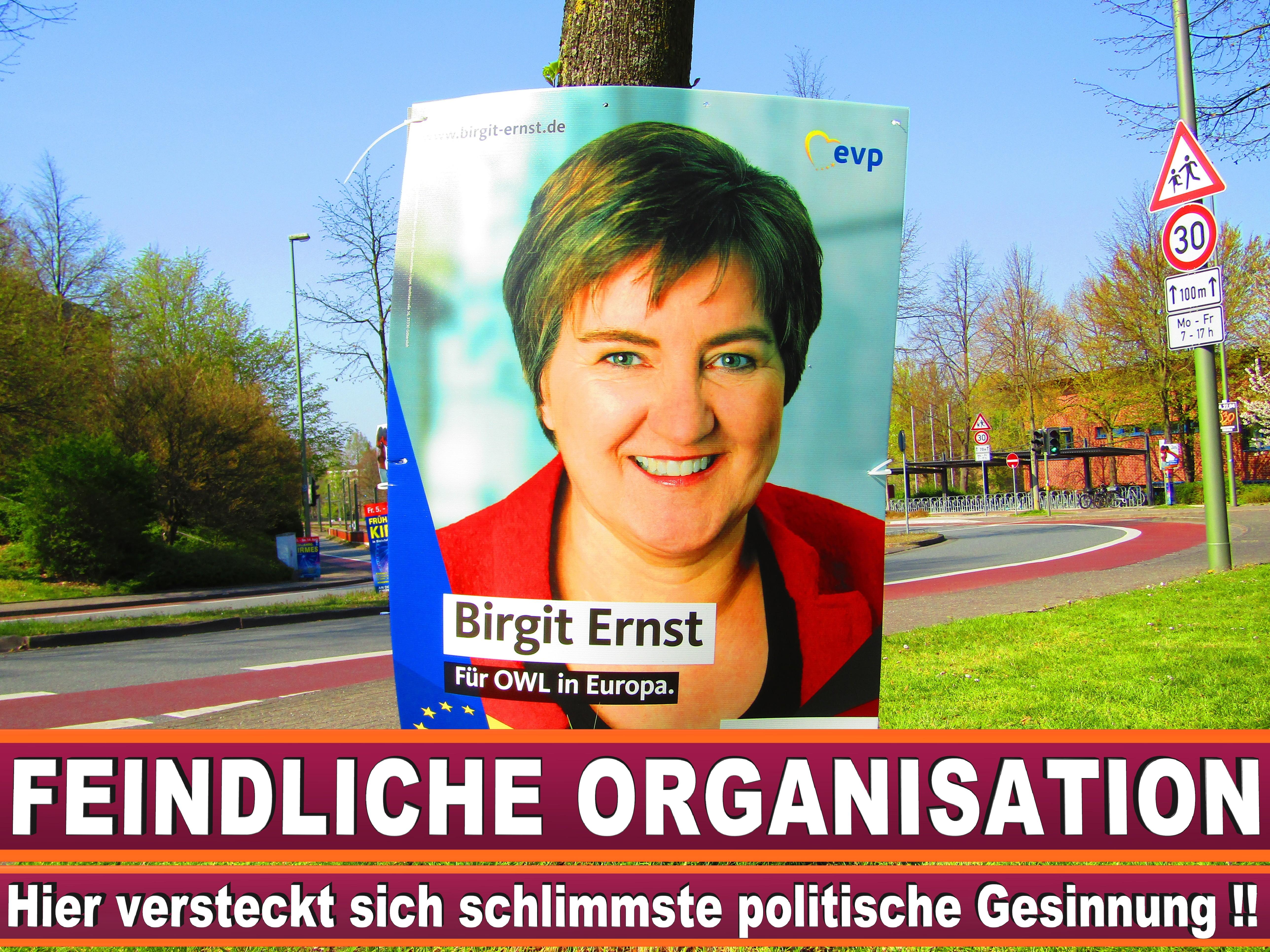 Europawahl Helfer