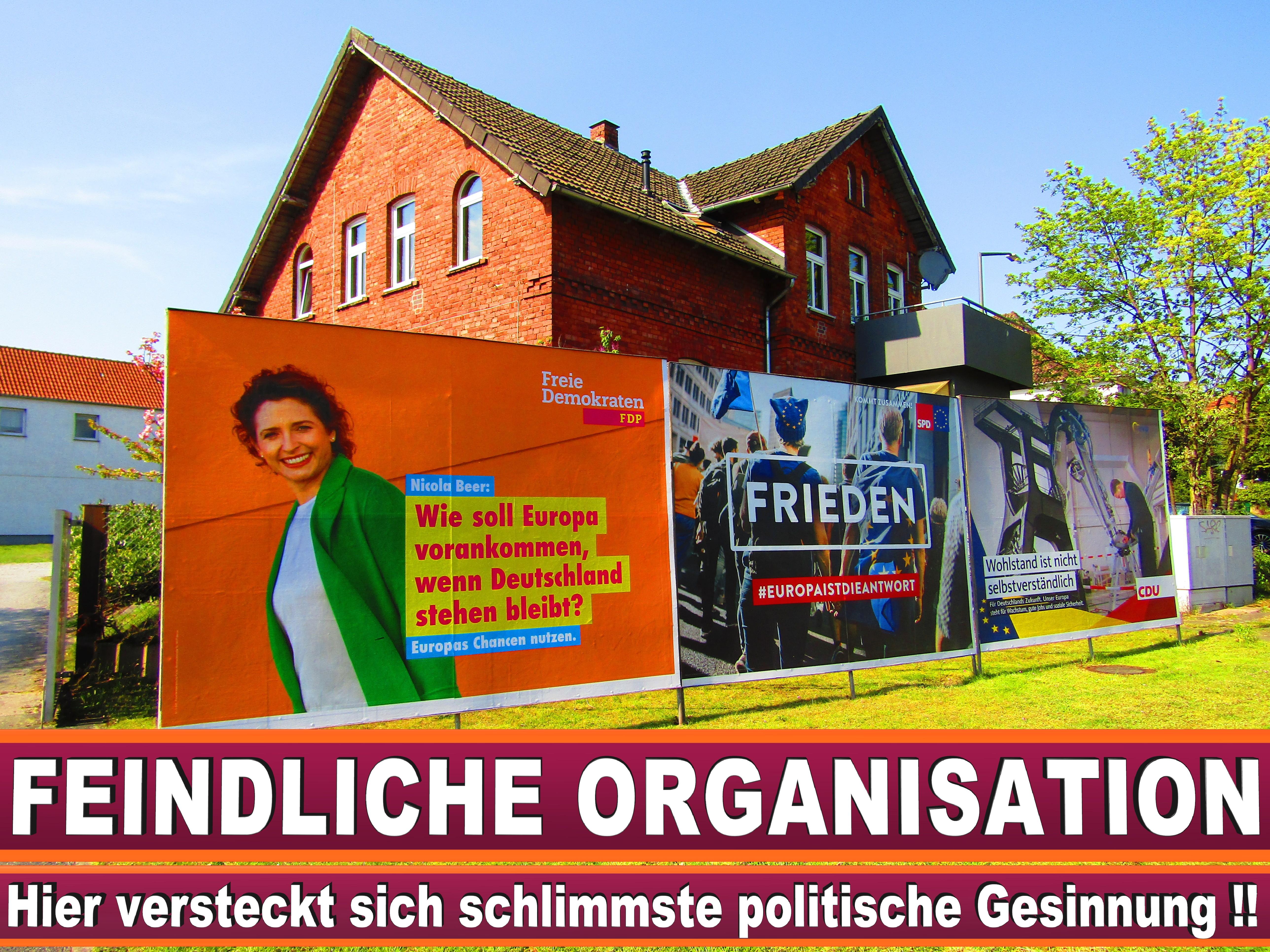 Europawahl Kandidaten Grüne