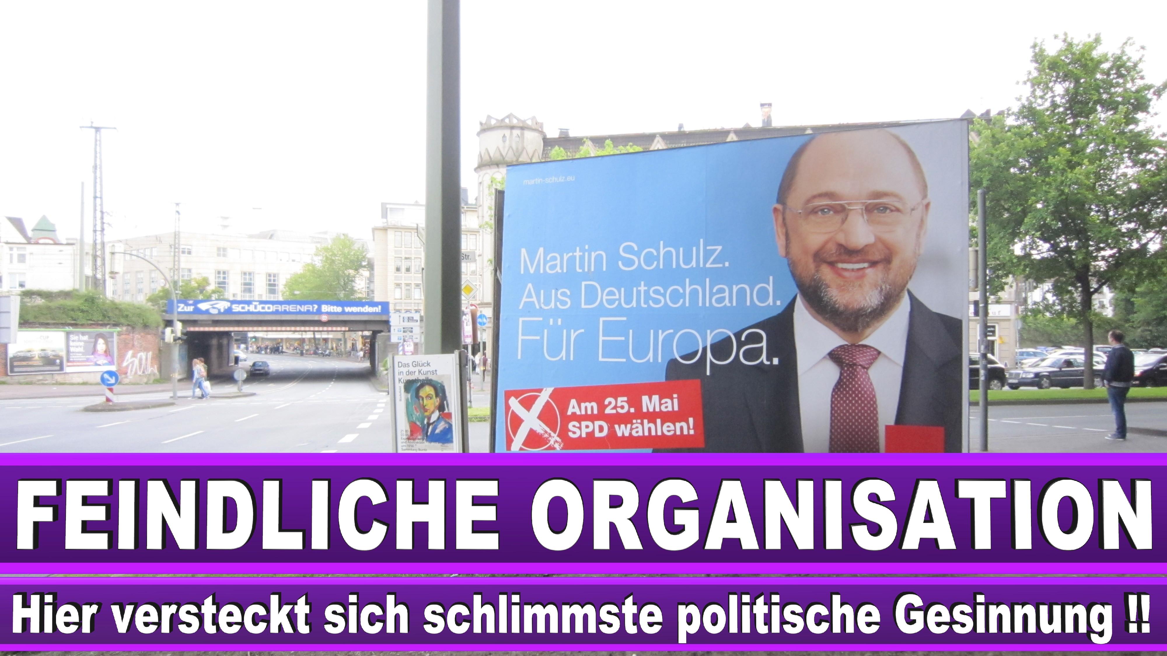 Europawahl Orban