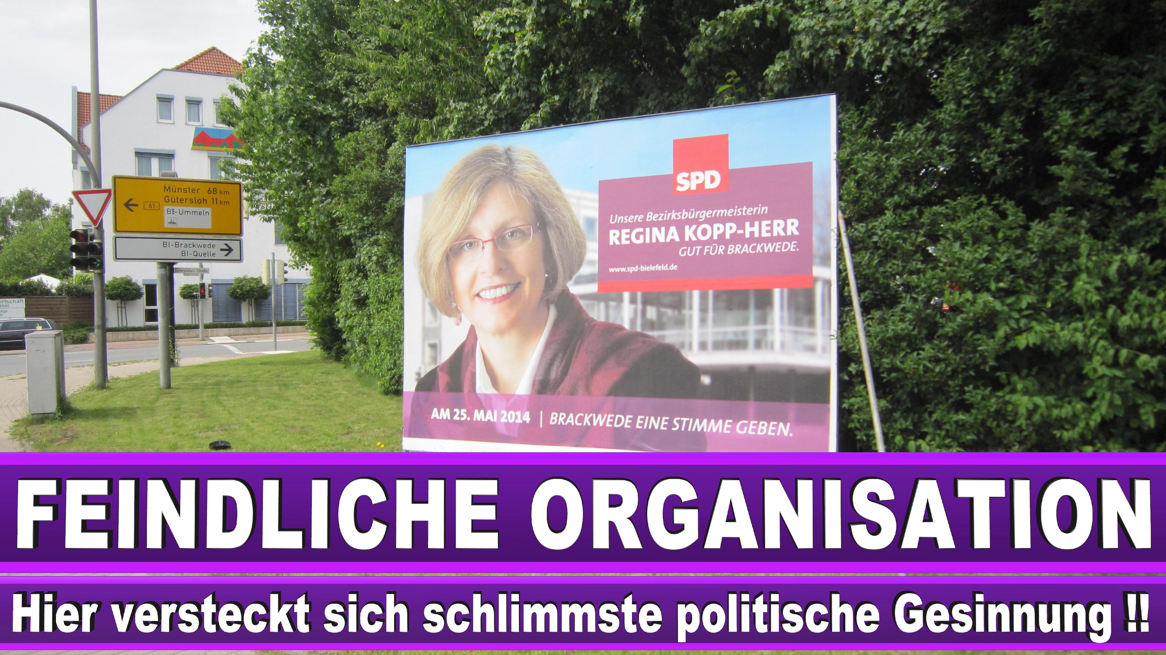 Europawahl Programme