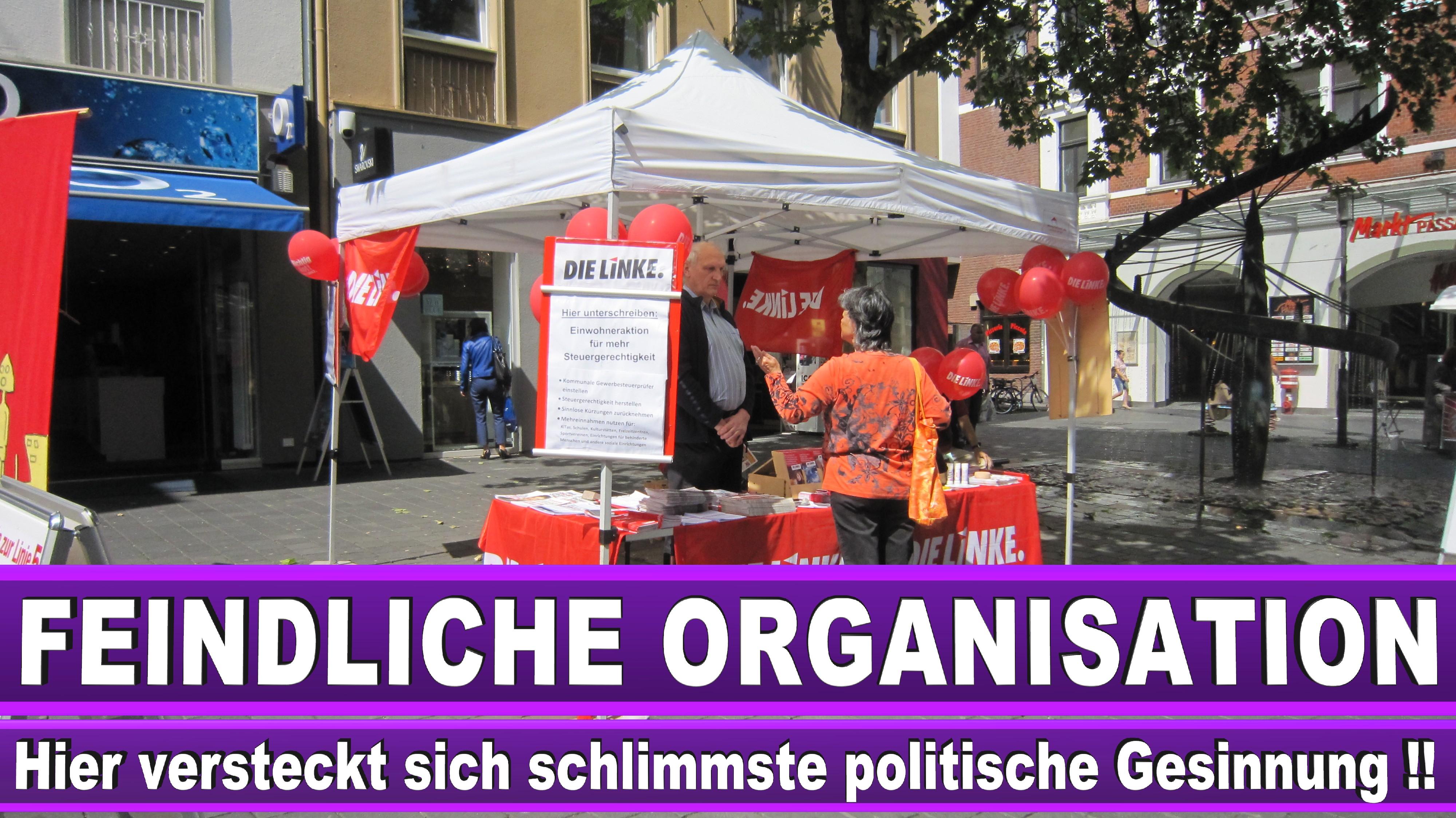 Europawahl Teilnehmen